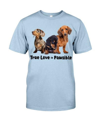 DogTee Dachshund True Love Is Pawsible