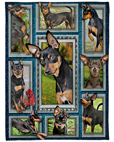 DogTee Miniature Pinscher Window Frames