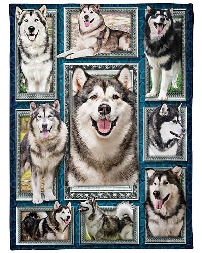 DogTee Alaska Malamute Window Frame