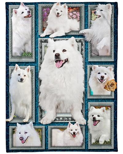 DogTee American Eskimo Dog Window Frames