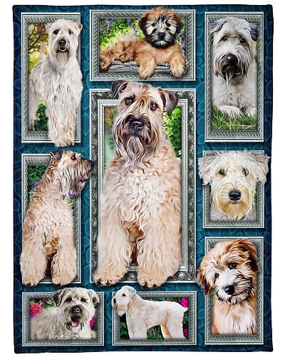 DogTee Soft-Coated Wheaten Terrier Window Frames