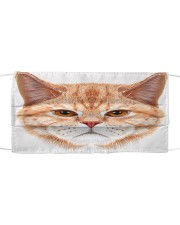 Cat Cloth face mask front
