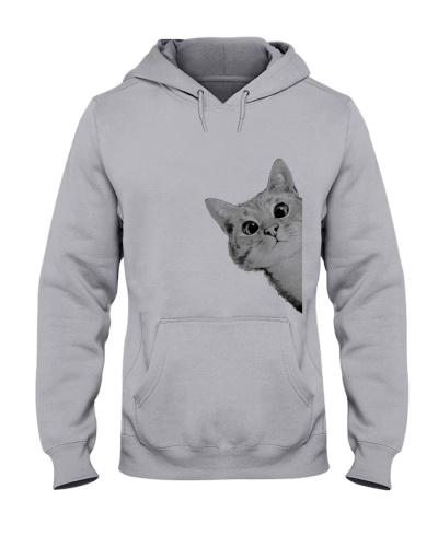 Cat chat marrant