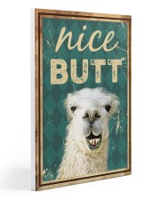 Llama Nice butt canvas 20x30 Gallery Wrapped Canvas Prints front