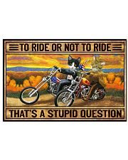 Cat To ride or not to ride Poster 24x16 Poster front