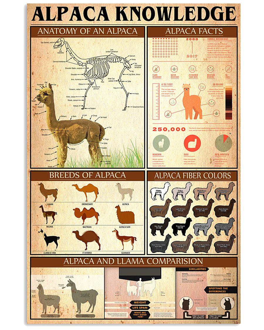 Alpaca Knowledge  24x36 Poster