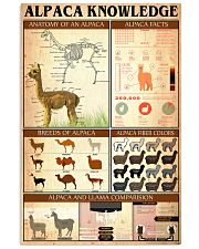 Alpaca Knowledge  24x36 Poster front