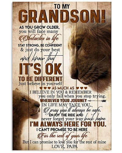 TO MY GRANDSON - LIONS