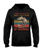 TO GRANDSON - T REX - TAKE AFTER Hooded Sweatshirt tile