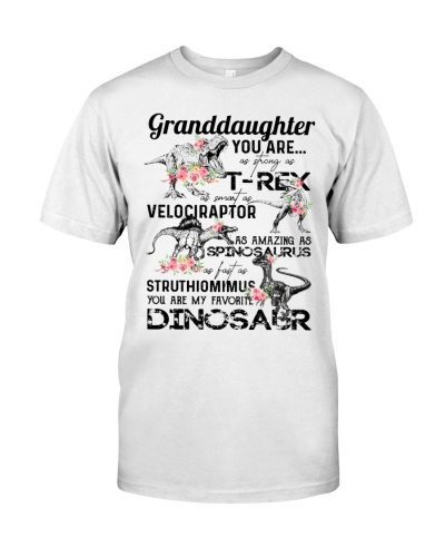 TO GRANDDAUGHTER - DINOS - FAVORITE DINOSAUR