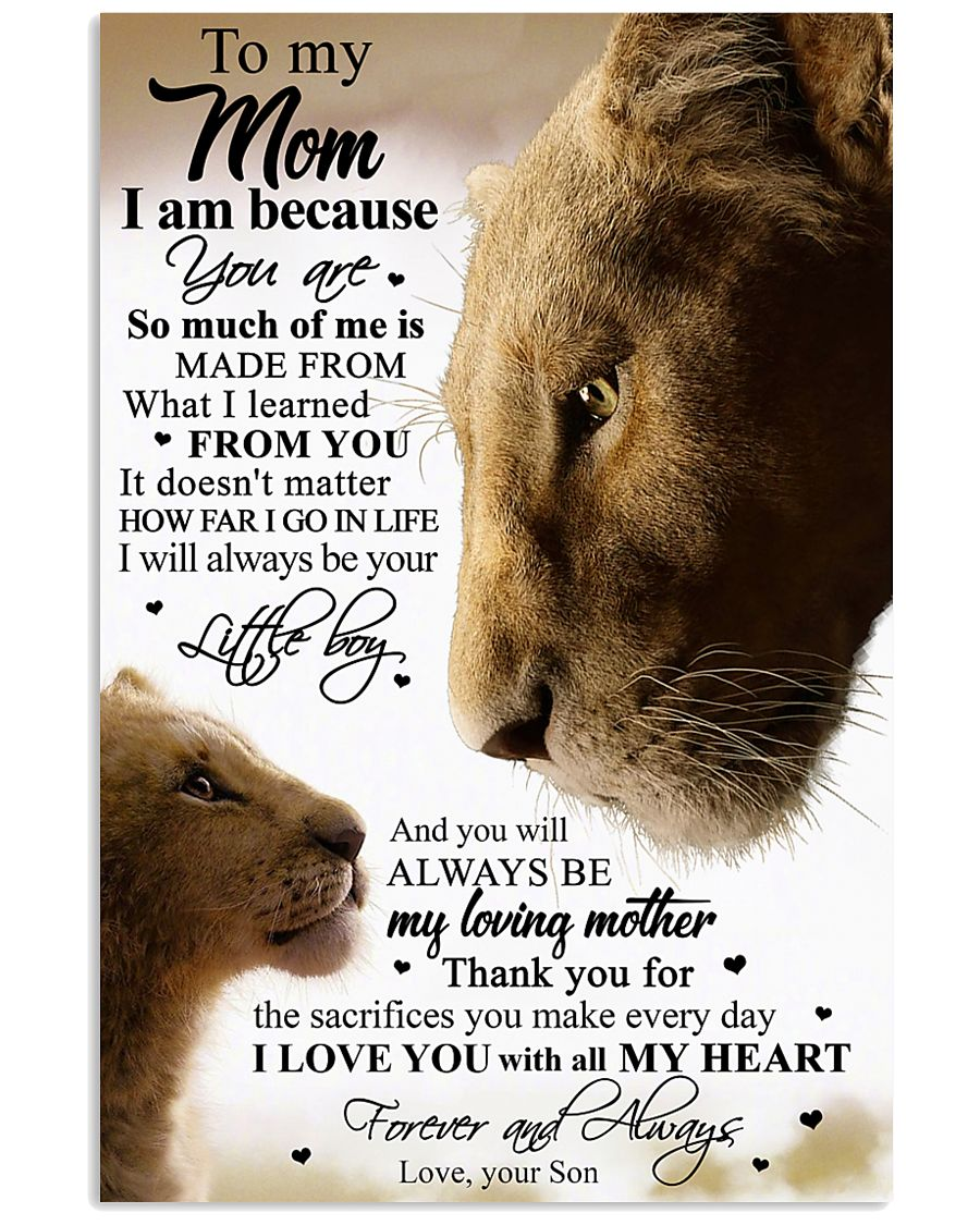 SON TO MOM 16x24 Poster