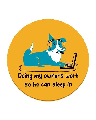 Doing My Owners Work So He Can Sleep In Shetland
