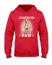 GREYHOUND Hooded Sweatshirt front