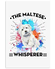 MALTESE 11x17 Poster thumbnail