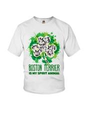BOSTON Youth T-Shirt thumbnail