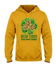 BOSTON Hooded Sweatshirt front