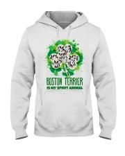 BOSTON Hooded Sweatshirt thumbnail