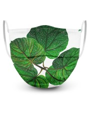 Green Plant 3 Layers Mask 3 Layer Face Mask - Single front