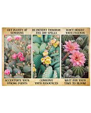 Cactus 17x11 Poster front