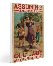 Softball - Assuming I'm Just An Old Lady  20x30 Gallery Wrapped Canvas Prints thumbnail