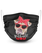 Pitbull mom face mask 2 Layer Face Mask - Single front