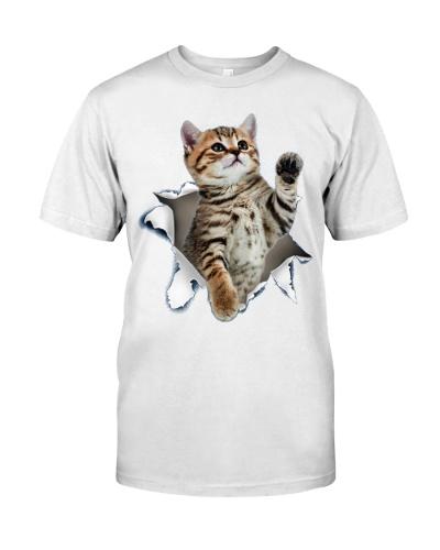 CAT CAT CAT CAT CAT CAT CAT CAT CAT CAT CAT CAT