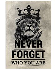 LION - NEVER FORGET 16x24 Poster front