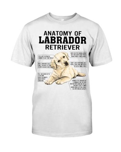 Anatomy Of A Labrador Retriever Funny Dog Owner