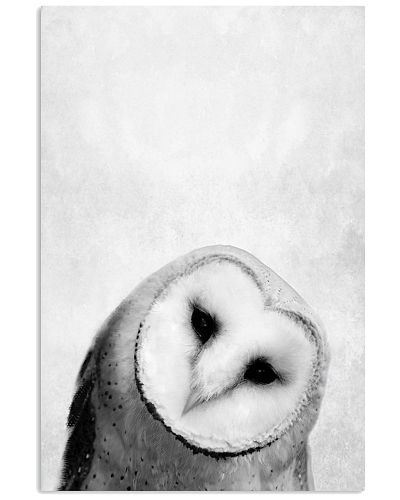 OWL ART - ANIMAL PRINTS