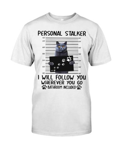 Personal Stalker British Shorthair