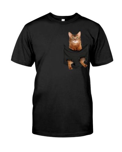 Somali Cat In Pocket
