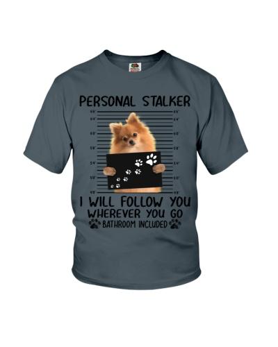 Pomeranian Personal Stalker