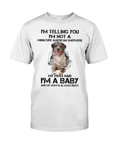 I'm Telling You I'm Miniature American Shepherd