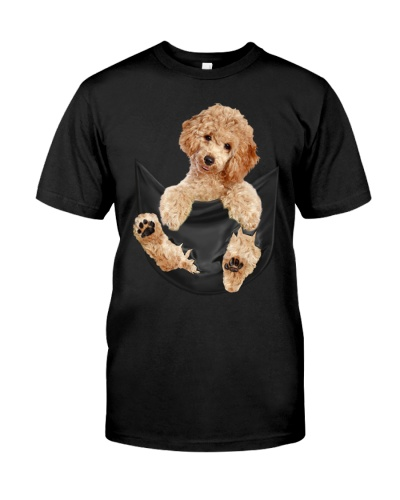 Poodle In Pocket
