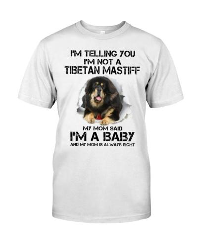 I'm Telling You I'm Not A Tibetan Mastiff