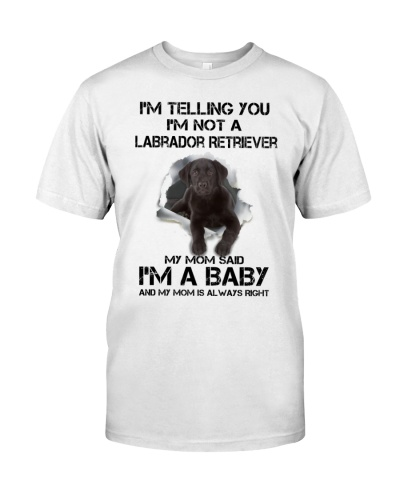 I'm Telling You I'm Not A Labrador