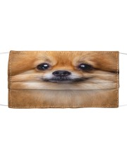 Pomeranian Cloth face mask front