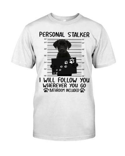 Personal Stalker Labrador