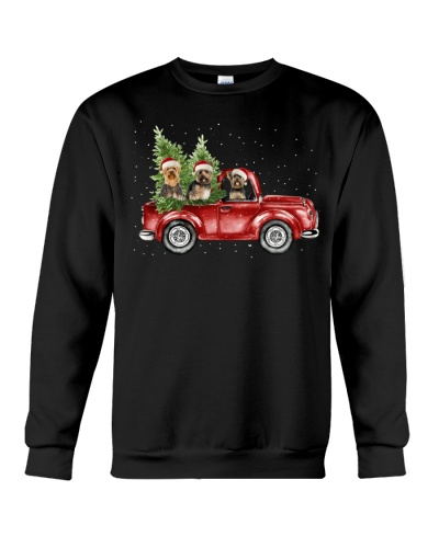 Yorkshire Terriers christmas car
