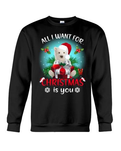 Polar bear for Christmas