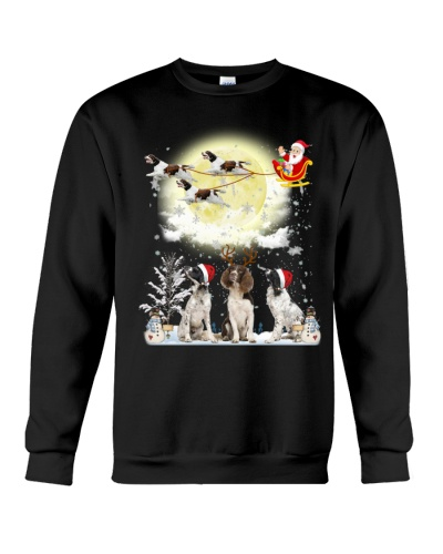 English Springer Spaniel fun christmas