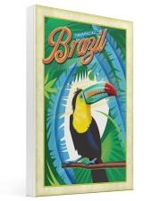 Brazil tropical 16x24 Gallery Wrapped Canvas Prints thumbnail