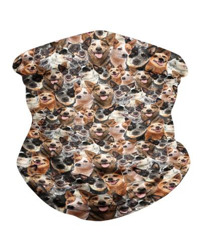 Australian Cattle Dog Faces BDN