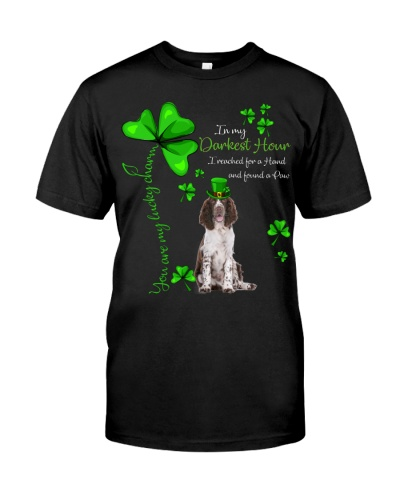 My Lucky Charm is English Springer Spaniel2