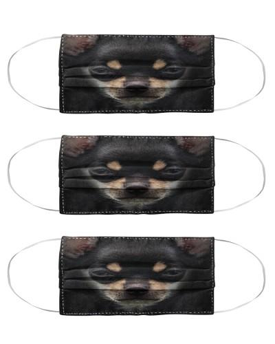 Chihuahua 1 Face