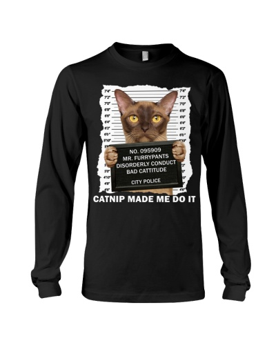 Burmese Cat  - Catnip