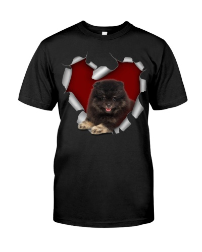 Pomeranian 2 Torn Heart