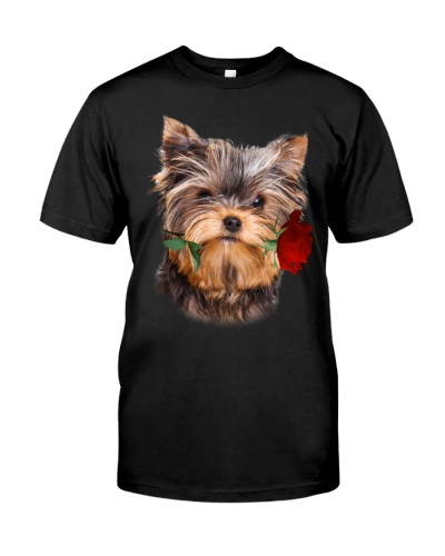 Yorkshire Terrier With Rose Branch