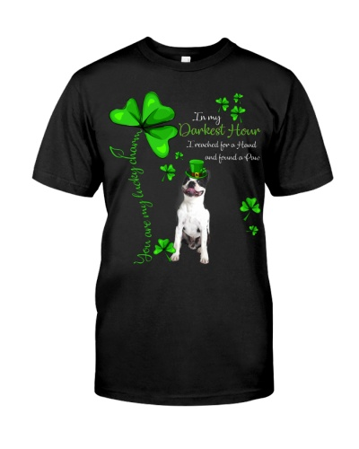 My Lucky Charm is Boston Terrier