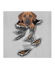 Rhodesian Ridgeback-Scratch1-FM Cloth face mask aos-face-mask-coverlet-lifestyle-front-02